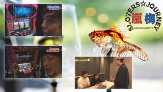 嵐・梅屋のスロッターズ☆ジャーニー #556